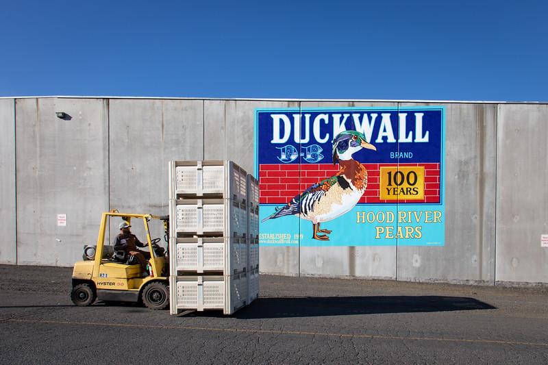 Duckwall20-1003.jpg