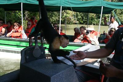 Lake Gatun Boat Trip