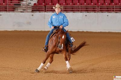 Wednesday Novice Horse Set 12 88-95
