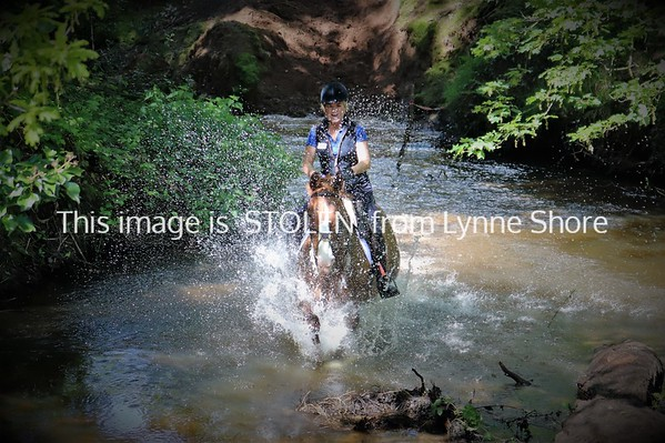 Peover 2nd fun ride - River 12/05/19