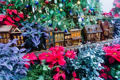 Botanical Garden Holiday