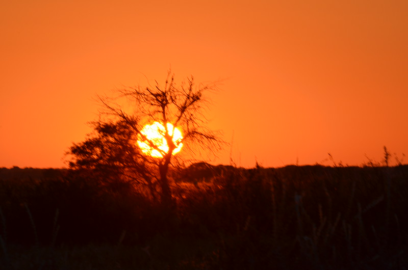 36 - Sunset - Kalahari Anne Davis