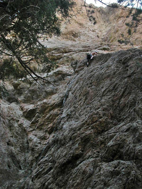 03_07_27 climbing williamson 076.jpg