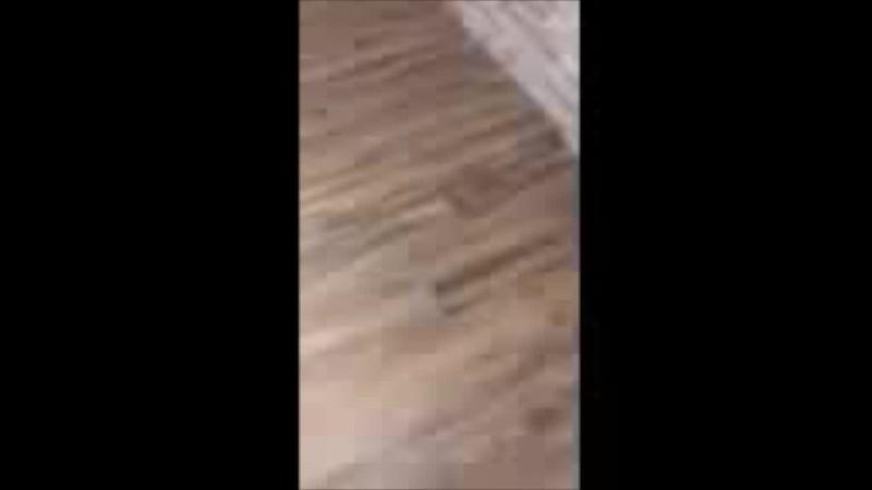 Floor video