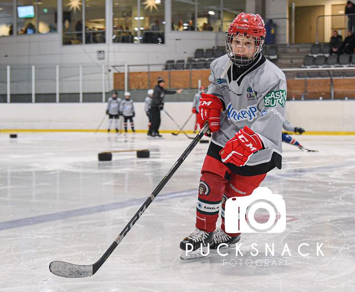 HockeyPT Mellandagscamp 2019-12-28 Grå Grupp