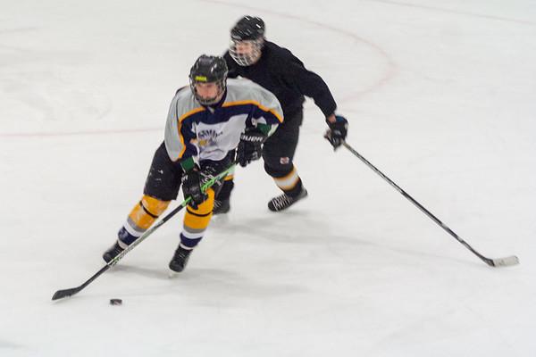 Pottstown Penguins at Hatfield Ice Hawks 12-7-2014