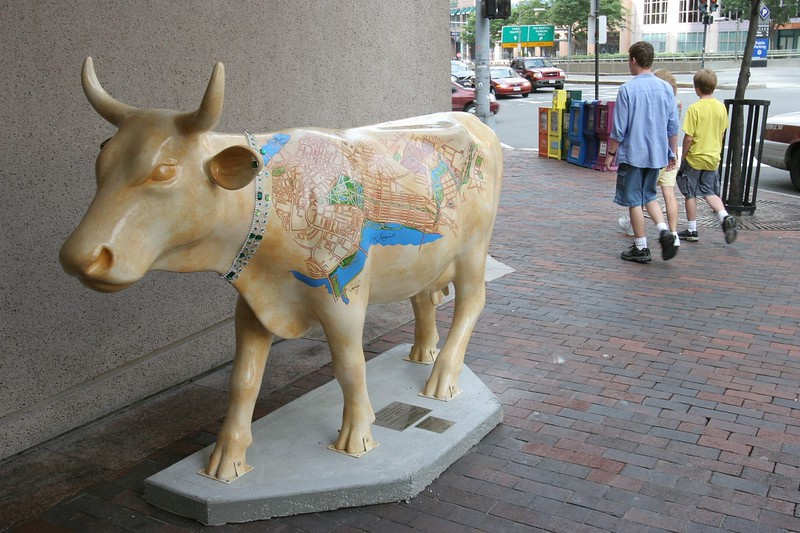 BOS075 Disk1_IMG_0081.CR2 - Emmy, the Emerald Necklace Cow - BOS33031.jpg