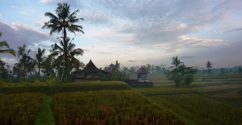 Staying at Rumah Capung, Ubud, Bali is like living in a painting