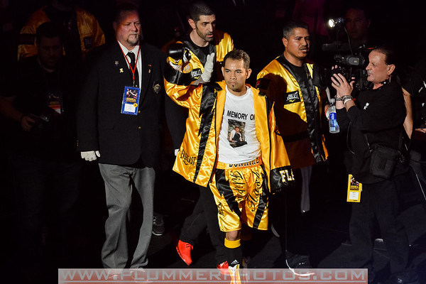 Rigondeaux vs Donaire April 2013
