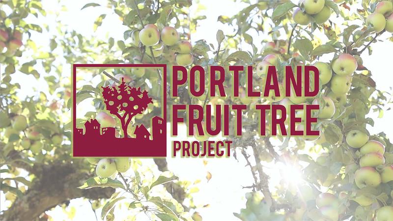 FruitTreeProjectClip10.20.mp4