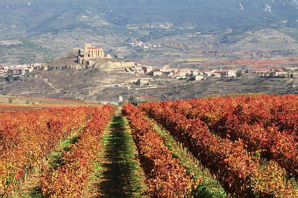 El Camino - 2 - Rioja