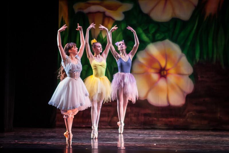 Alice-Act 1 Scene 4&5 Flowers (level 3&7,8)