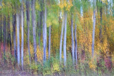 Impressionist-Artsy