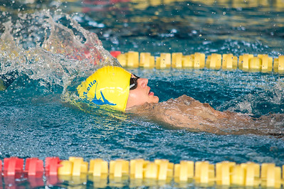 EFSL Swimming Championship 2016