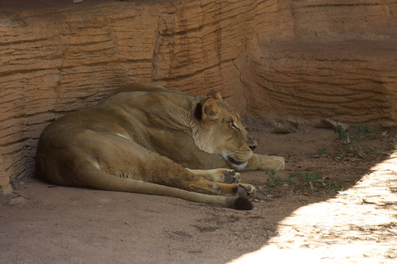 Zoo_Trip_14.jpg