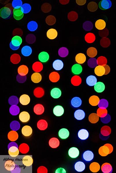 Christmas Lights-123.jpg