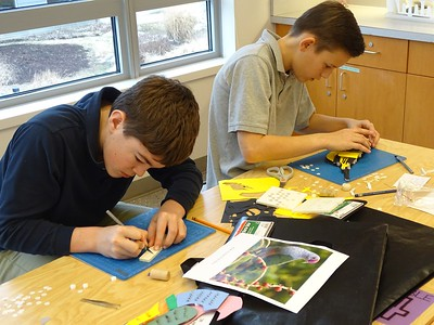 8th Grade Paper Bird Sculptures