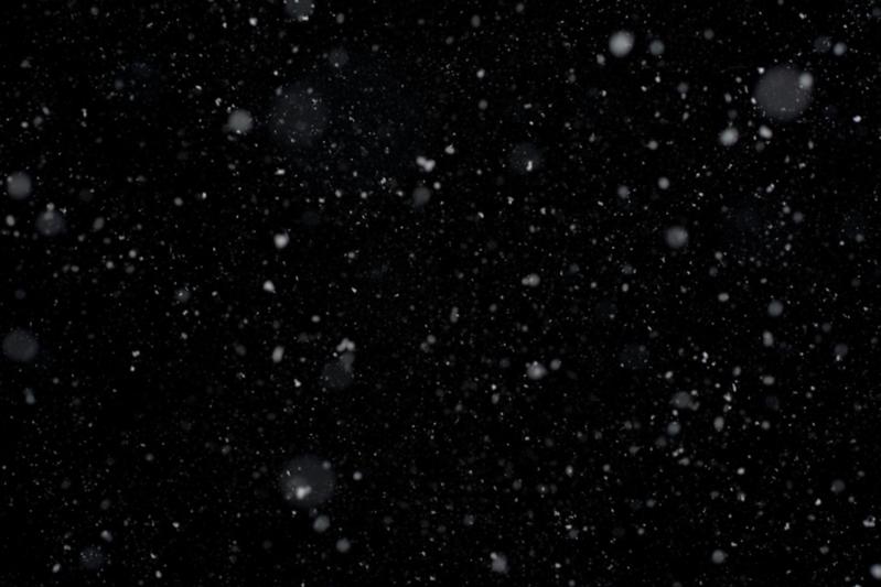 Meg_Snow3.png