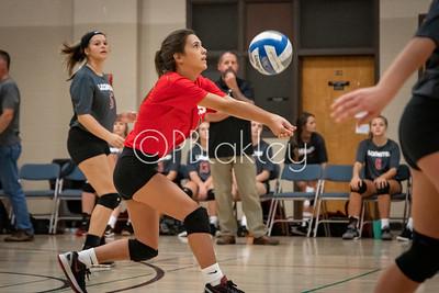 LHS Volleyball (8-6-2019)