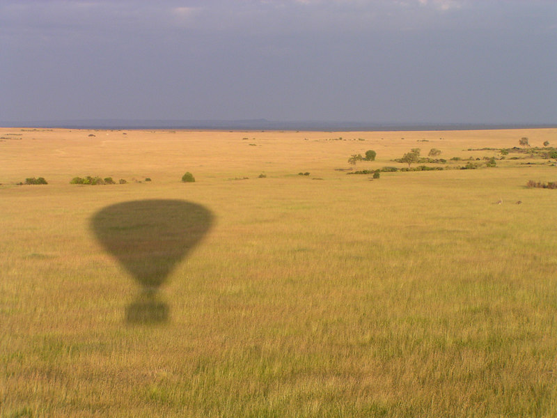 This is the one thing everyone should do before they die; soar in a hot-air balloon over the Serengeti Plain, at dawn.