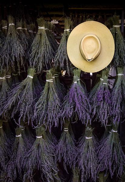 Mike Maney_Lavender Farm-1.jpg