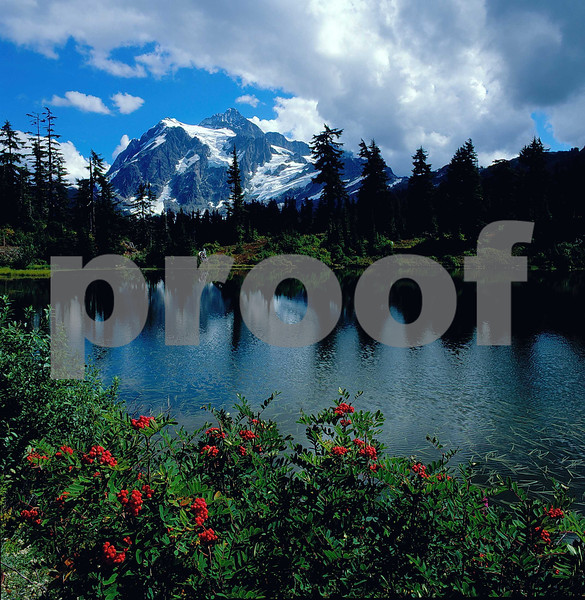 Mt. Shuksan is reflected in Picture Lake.