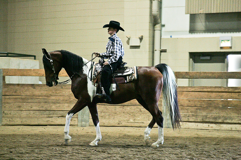 EMAA Class 52 Western Horsemanship 13 and Under