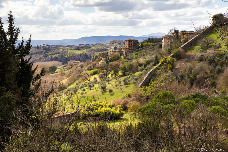 Siena2018March-0625.jpg