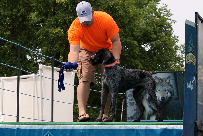 2015.8.6 Winnebago County Fair Dock Dogs (47).JPG