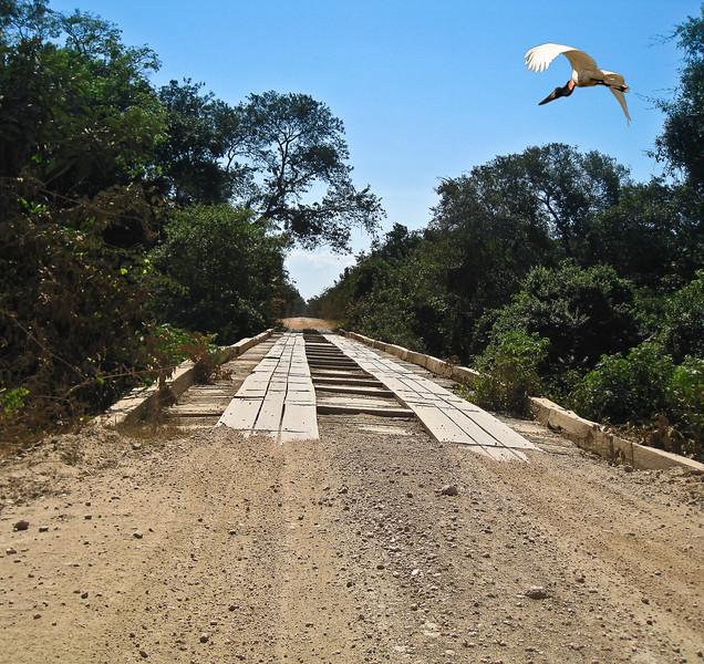 BRIDGE WITH JABARU - KEEPER.jpg