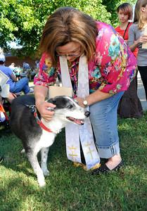 Blessing of the Animals Memorial Presbyterian