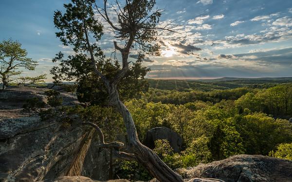 Illinois ~ Shawnee National Forest
