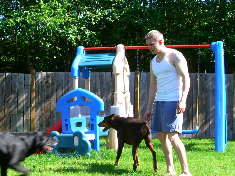 Playing with the dogs and Kimber in the backyard.