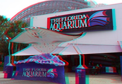 Tampa 3D Photos