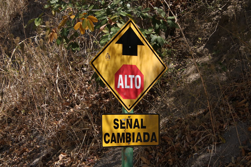 2020 Costa Rica 0524.JPG
