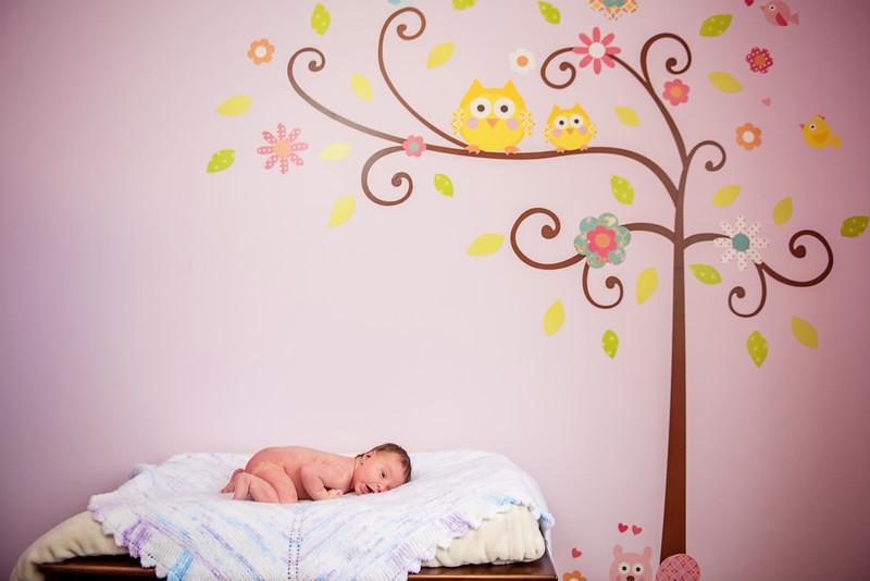 Erica-Agostinelli-newborn-_7507860.jpg