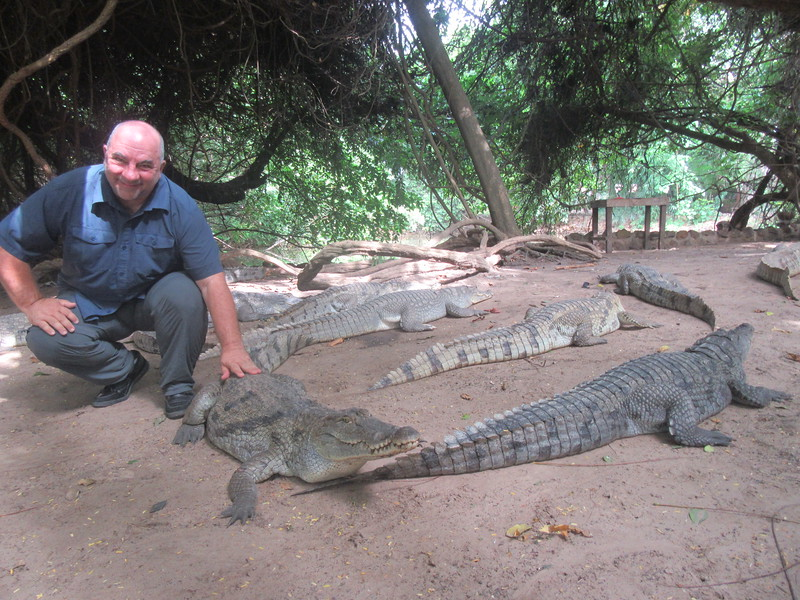 031_Banjul. Kachically Crocodile Poll. 100+. The bigger ones are 3m long. A Sacred site for the local people.JPG