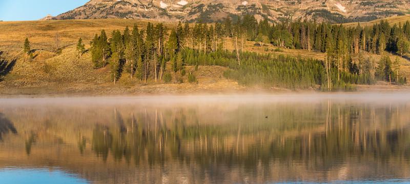 Swan-Lake-11.jpg