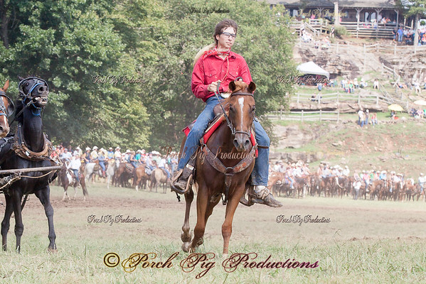 Clinton 2014 Outriders