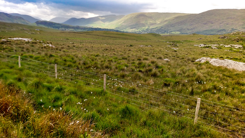 Countryside in Inagh Valley