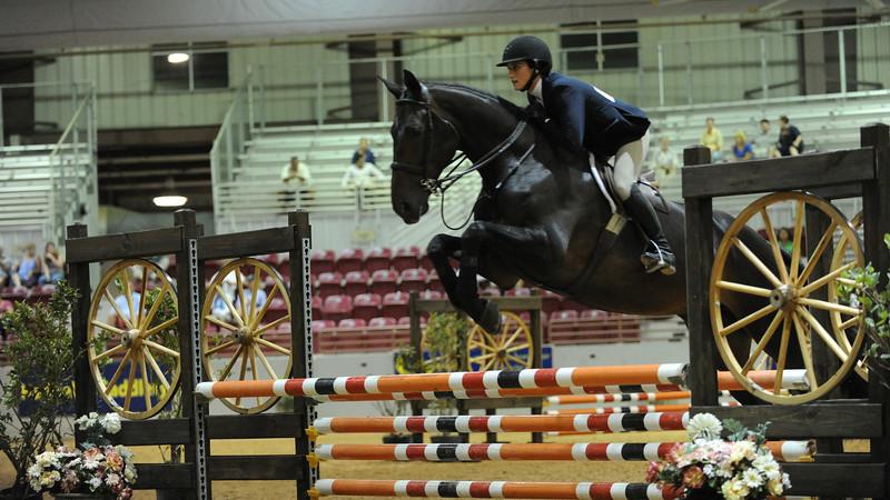 Horse show (26).jpg