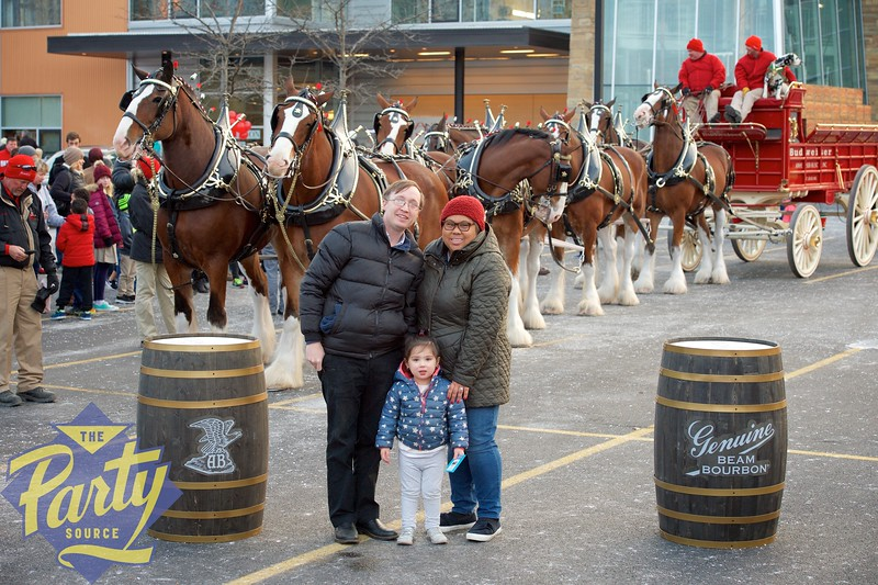 Clydesdale Portraits 339.jpg