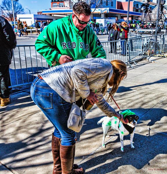 Saint Patrick's Day Dog.jpg