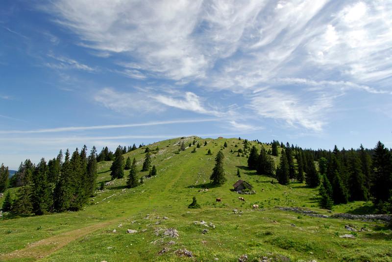 070626 7247 Switzerland - Geneva - Downtown Hiking Nyon David _E _L ~E ~L.JPG