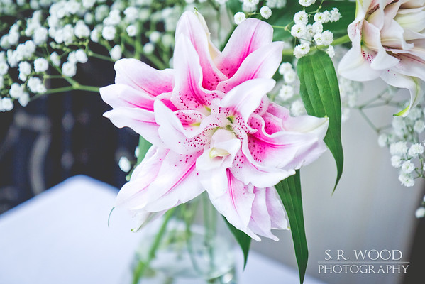 Blog - Taylor Wedding
