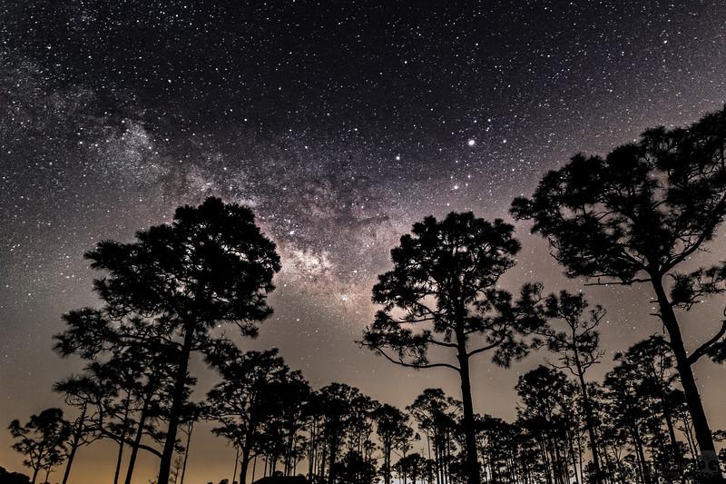 Milky Way core over Babcock/Webb WMA