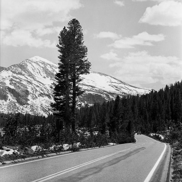 Yosemite_052018007.jpg