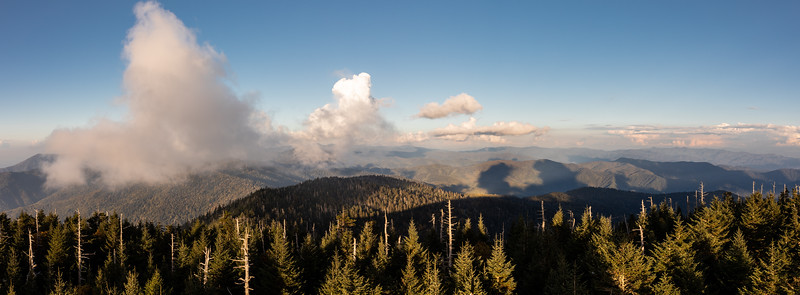 WVWS_Clingmans Dome Smoky Mountain National Park-.jpg