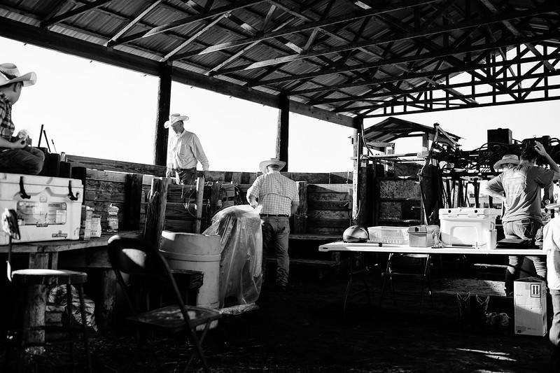 Breely Barthle Ranch B&W 3 (33 of 46).jpg