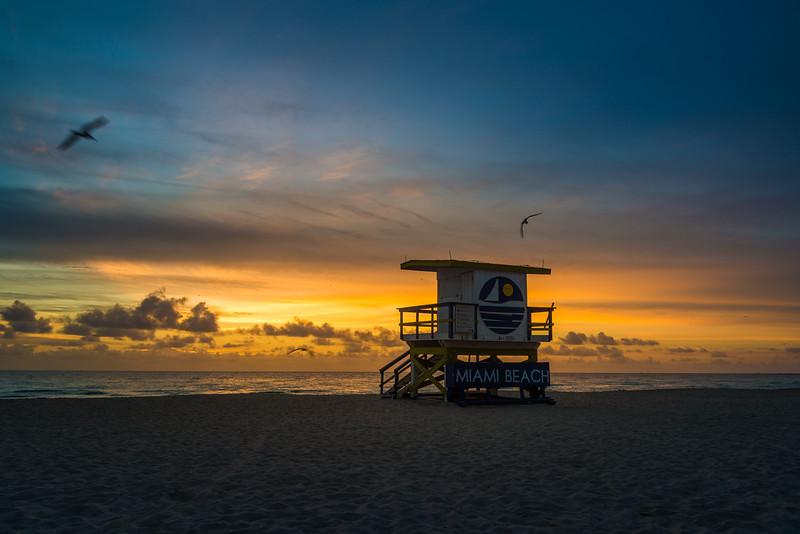 Miami-131.jpg